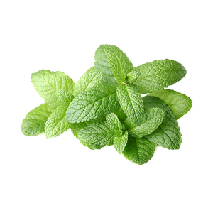 fresh-mint_e-liquid.jpg