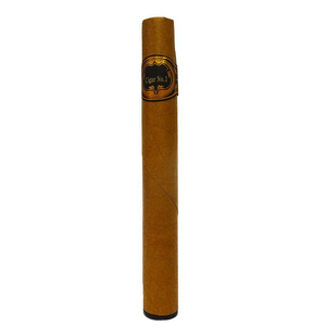Disposable_E-cigar.jpg